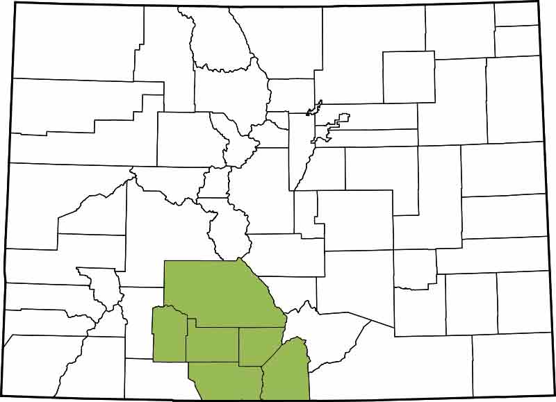 12th Judicial District- Alamosa, Costilla, Conejos, Rio Grande, Mineral, Saguache
