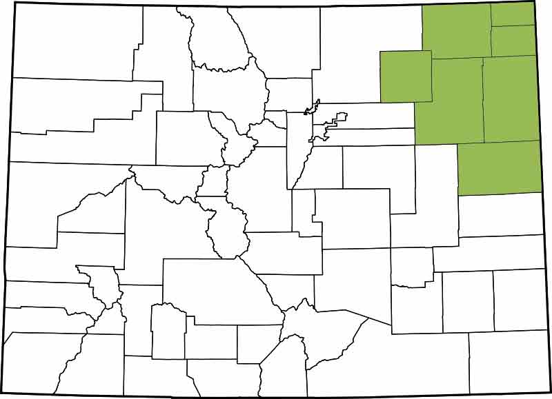 13th Judicial District - Kit Carson, Logan, Morgna, Phillips, Sedgwick, Washington, Yuma