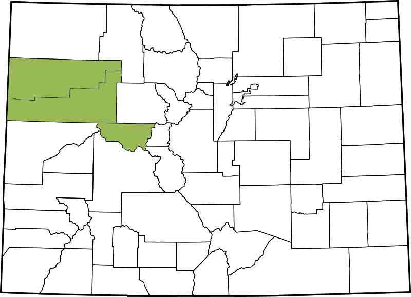 9th Judicial District - Garfield, Rio Blanco, Pitkin