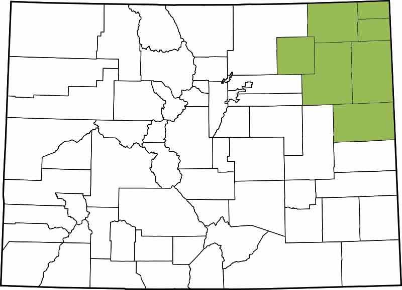 13th Judicial District - Kit Carson, Logan, Morgna, Phillips, Sedgwick, Washington, Yuma