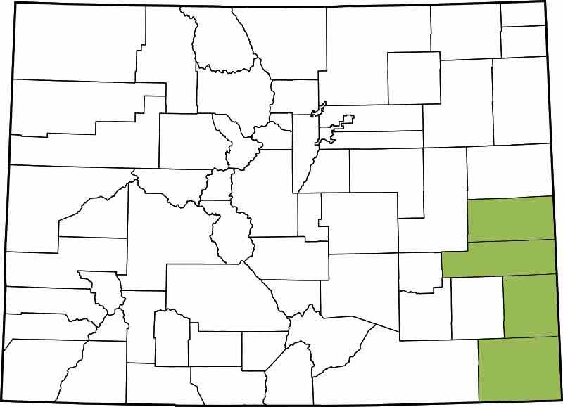 15th Judicial District - Baca, Cheyenne, Kiowa, Prowers
