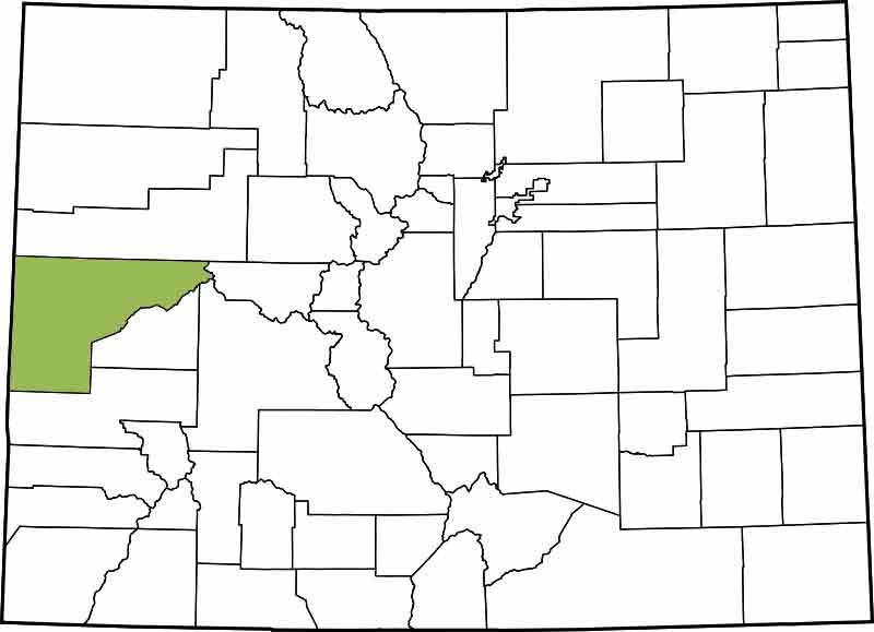 21st Judicial District - Mesa