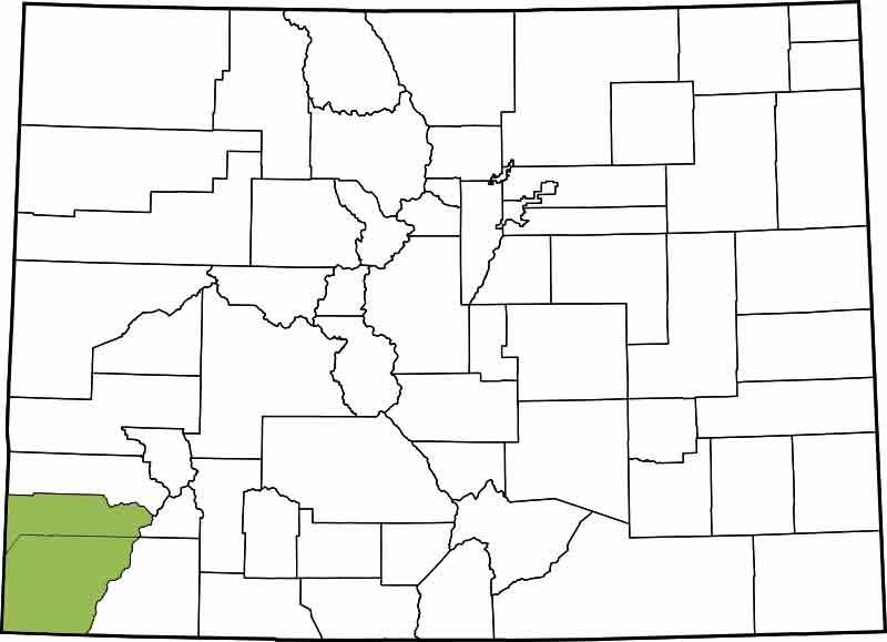 22nd Judicial District - Dolores, Montezuma