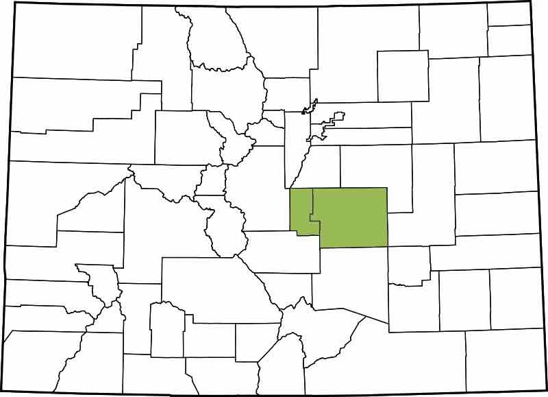 4th Judicial District - El Paso, Teller
